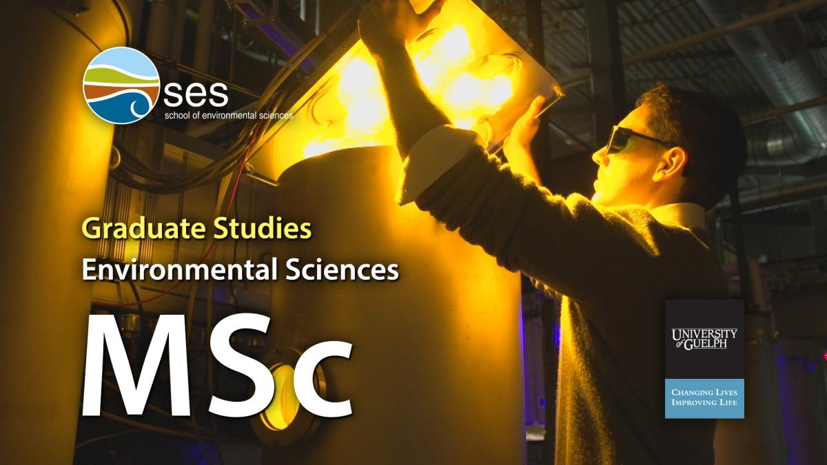 Environmental Studies Faculty of Environmental Studies   York University
