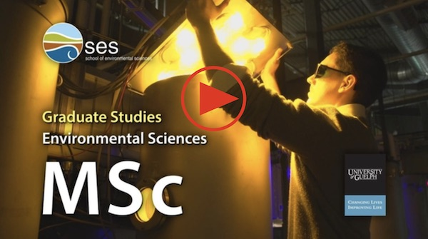 Link to our MSc video