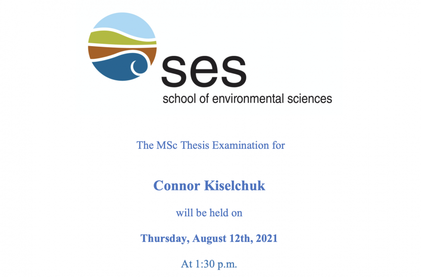 Screenshot of the Thesis Announcement