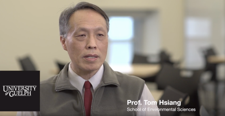 YouTube Video - Meet Tom Hsiang