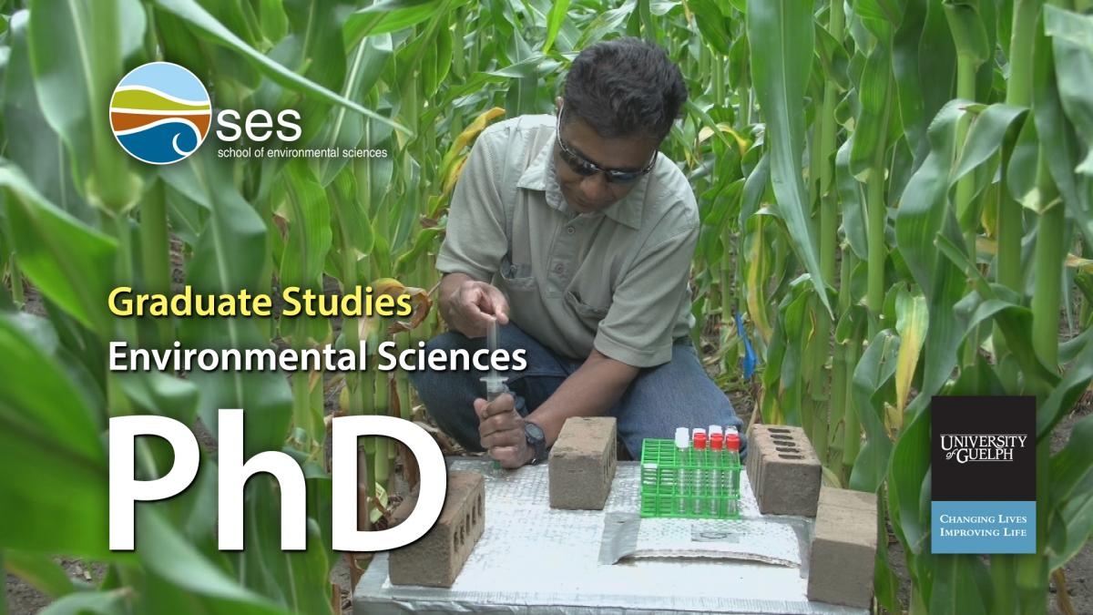 Watch the PhD program video on YouTube