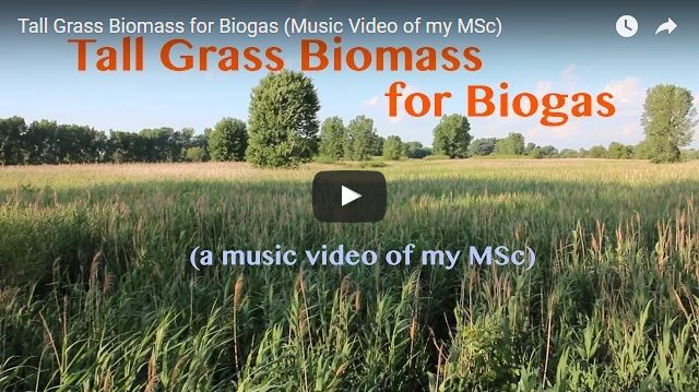 YouTube Video - Tall Grass Biomass for Biogas - a music video of my MSc